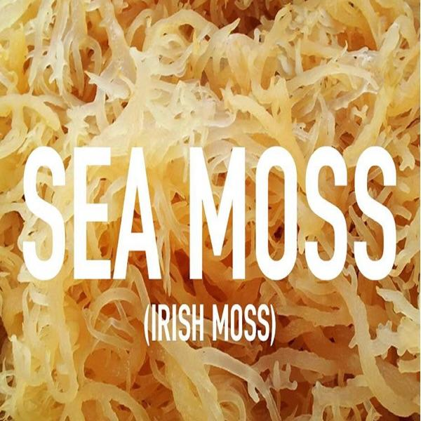 HEALTHY LIVING: THE BENEFITS OF SEA MOSS (IRISH SEA MOSS)